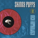 12 inch Anthology/Skinny Puppy
