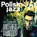 Another Raindrop (Polish Jazz)/Kuba Wiecek Trio