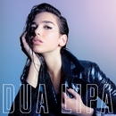 Lost In Your Light (feat. Miguel)/Dua Lipa