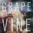Grapevine (feat. Sabi) [Radio Edit]/Locnville