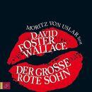 Der große rote Sohn/David Foster Wallace
