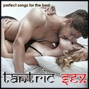 Perfect Songs for the Best Tantric Sex/Danny Vanrell