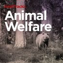 HelpTracks 05: Animal Welfare/HelpDirect