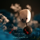 Surgery In The Sky/Venus Hum