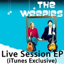 iTunes Session/The Weepies