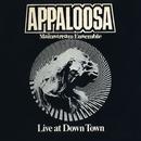 Live at Down Town/Appaloosa Mainstream Ensemble