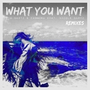What You Want  (feat. Nicole Gartz) [Remixes]/Tim Gartz & Cammora