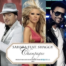 Champagne (feat. Shaggy) [Jump Smokers Radio Mix]/Sahara