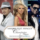 Champagne (feat. Shaggy) [Remixes]/Sahara