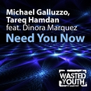 Need You Now (feat. Dinora Marquez)/Michael Galluzzo & Tareq Hamdan