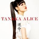 運命/TANAKA ALICE
