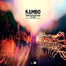 Stand Up In The Light (feat. Ayla)/KAMBO