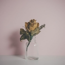 Belong (feat. Kimbra) [Batuk Remix]/Fyfe