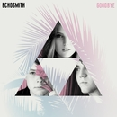 Goodbye (Lyric Video)/Echosmith