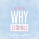 Why So Serious/Falling Feathers