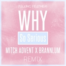 Why So Serious (Mitch Advent & Brannlum Remix)/Falling Feathers