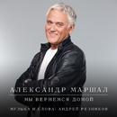 My vernemsja domoy/Aleksandr Marshal