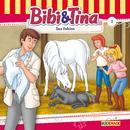 Folge 1: Das Fohlen/Bibi und Tina