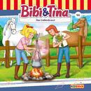 Folge 46: Das Liebeskraut/Bibi und Tina