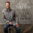 I'll Name the Dogs/Blake Shelton