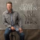 I'll Name the Dogs/Blake Shelton