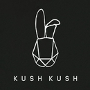 Fight Back With Love Tonight (Remixes)/Kush Kush