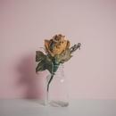 Belong (feat. Kimbra) [Clement Bazin Remix]/Fyfe