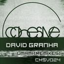Umami (REMIXES) EP/David Granha