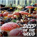Deep in the Wood/Various Artists