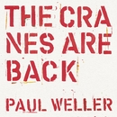 The Cranes are Back (Edit)/Paul Weller
