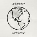 Dear World (Lyric Video)/Echosmith