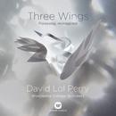 Three Wings - Ave Maris Stella/David Lol Perry