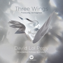 Three Wings - Sainte Nicholaes Solem/David Lol Perry