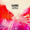 Stand Up In The Light (feat. Ayla) [Karol Tip Remix]/KAMBO