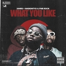 What You Like (feat. PnB Rock & MadeinTYO)/24hrs