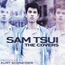 The Covers/Sam Tsui & Kurt Schneider