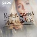 Never Gonna Take U Back (feat. River)/Igloo