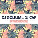 Paradise/DJ Gollum