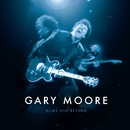 Blues and Beyond/Gary Moore