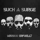 Mission erfüllt/Such A Surge