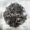Dark Matter Dimensions [Exclusive Bonus Version]/Scar Symmetry