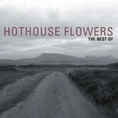 The Best Of/Hothouse Flowers