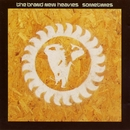 Sometimes/Brand New Heavies, The