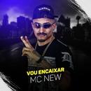 Vou encaixar/MC New