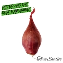 That Shallot/Peter And The Test Tube Babies