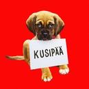 Kusipää/Roope Salminen & Koirat