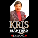 Bimbang/Kris Biantoro