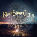 Burnin'/Black Stone Cherry