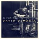 Si pudiera (Directo 20 años)/David Demaria