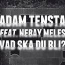 Vad ska du bli? (feat. Nebay Meles)/Adam Tensta